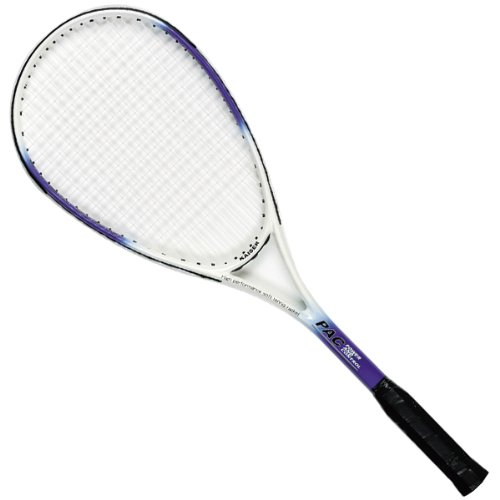 カイザー(kaiser) 軟式 テニス ラケット KW-926 一体成型 ケース付 練習用 レジャー ファミリースポーツ