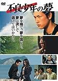 不良少年(ヤンキー)の夢[DVD]