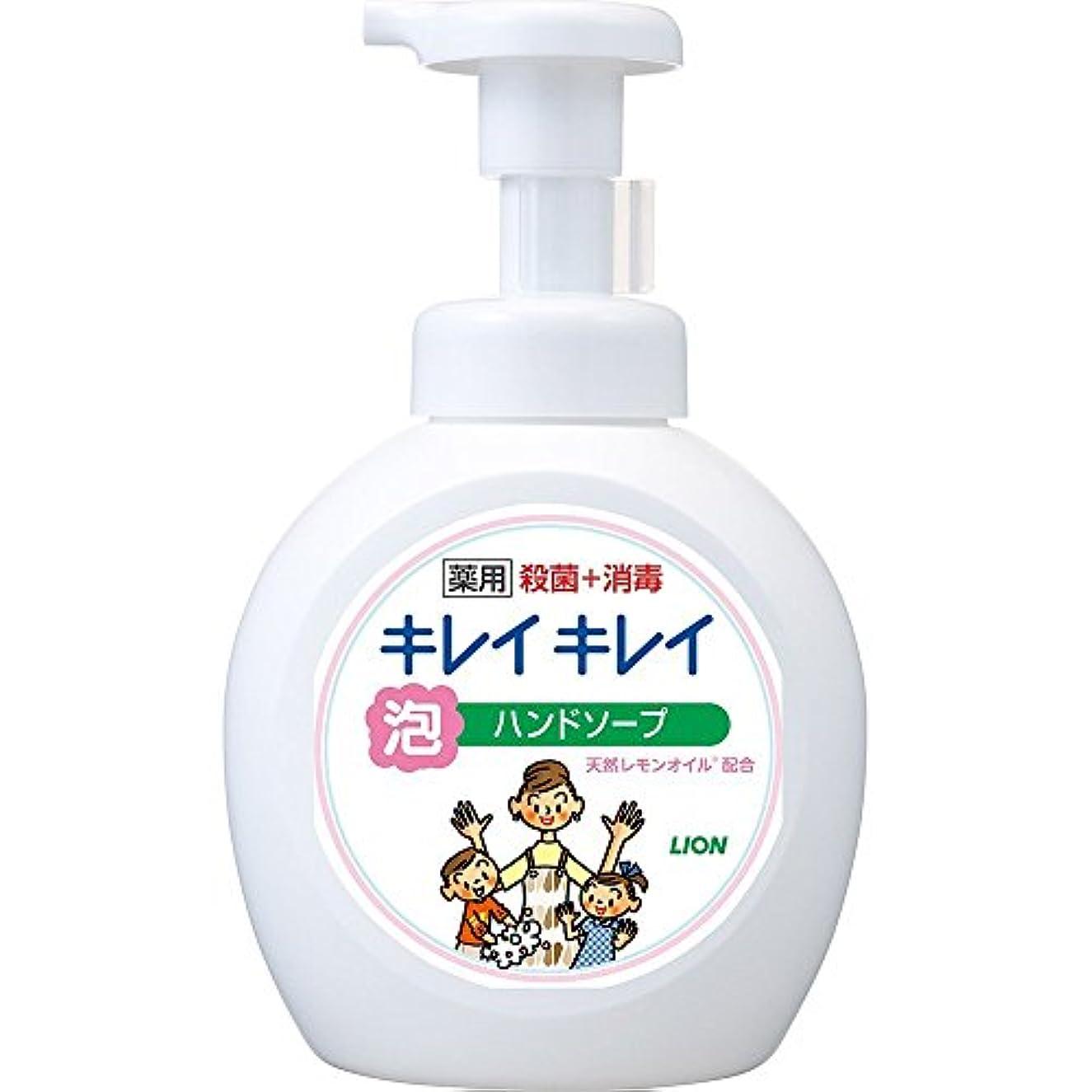 迷信アルファベットスティックキレイキレイ 薬用 泡ハンドソープ シトラスフルーティの香り 本体ポンプ 大型サイズ 500ml(医薬部外品)
