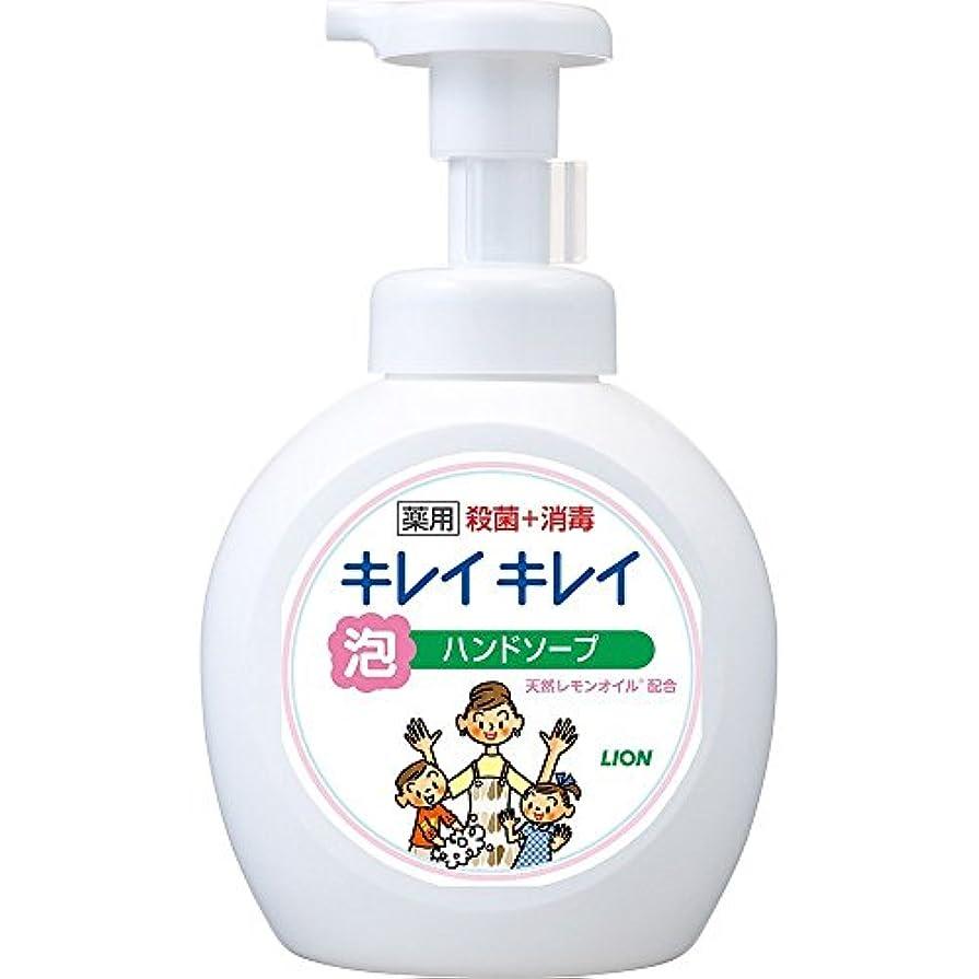 建設集計必要条件キレイキレイ 薬用 泡ハンドソープ シトラスフルーティの香り 本体ポンプ 大型サイズ 500ml(医薬部外品)