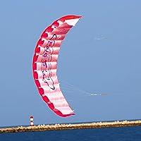 レッドデュアルラインParafoil Kite with Flyingツール子トレーニングアウトドアアクティビティおもちゃパラシュートスタントスポーツ