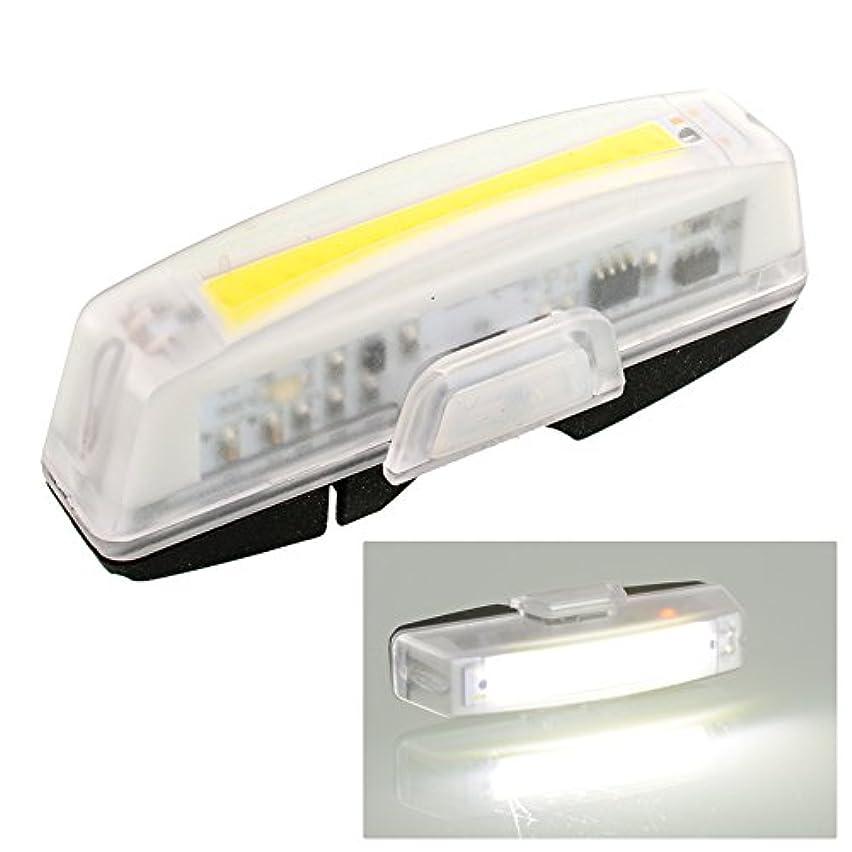時折電気受け継ぐBeautyrain 1個 自転車の尾灯/警告灯 USD充電式スーパーブライトグロー ホワイトライト