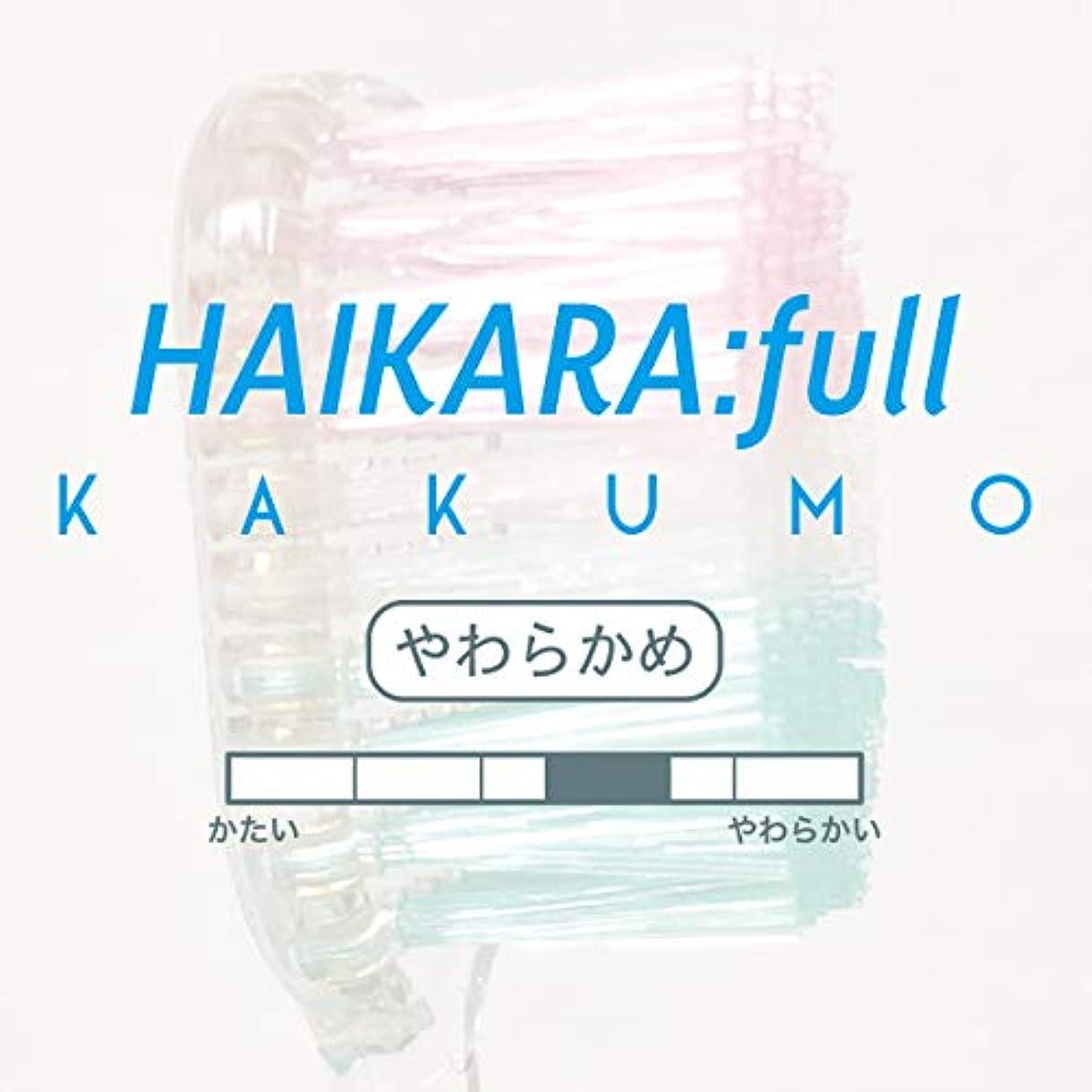 ポータル美容師レジワイドヘッド歯ブラシ ハイカラフル カクモウ HAIKARA:full -KAKUMO- (12本セット, やわらかめ)