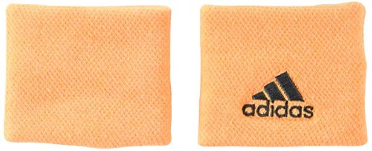 砂かすかなナンセンス[アディダス] リストバンド テニスウェア Tennis WB S DUR61 [ユニセックス]