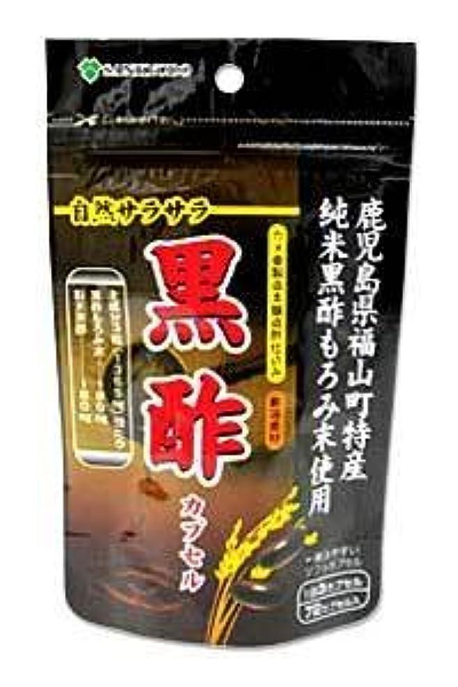 頭痛チャンピオン祈りAL/黒酢カプセル 72カプセル