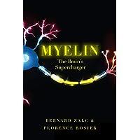 Myelin: The Brain's Supercharger