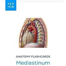 Anatomy flashcards: Mediastinum: Learn all organs on the go (Kenhub Flashcards Book 25)