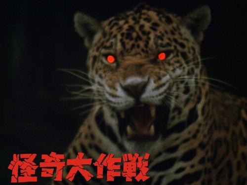 ジャガーの眼は赤い