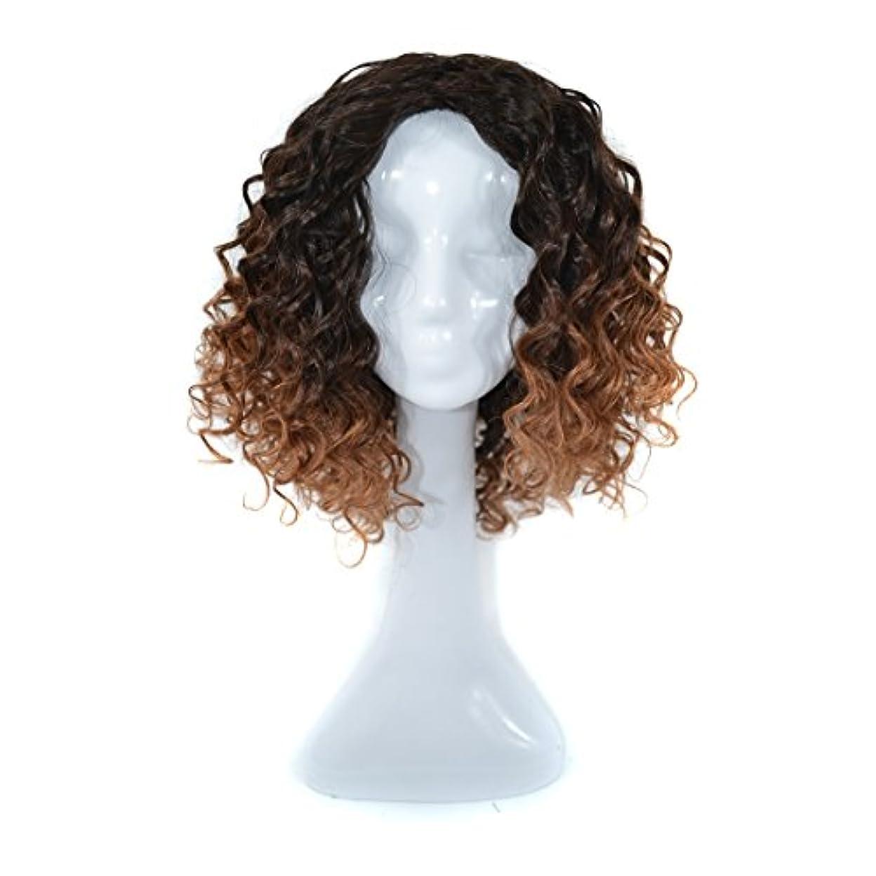 解放するセンチメンタルランデブーJIANFU 300グラムリアルフルウィッグ女性のためのヨーロピアンとアメリカンブラックDEEPスモールボリュームカーリーウィッグリアルな自然な人間の髪のために中傷と合成のデイリーウィッグ (Color : Black...