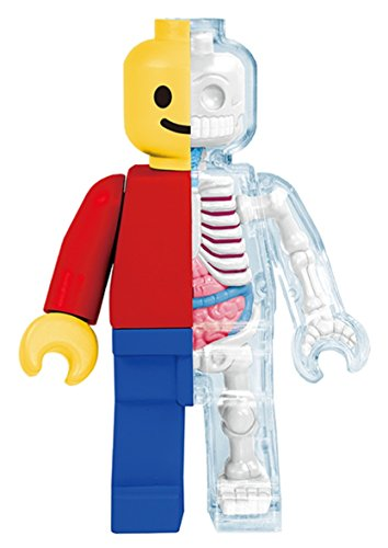 Brick Man Funny Anatomy By Jason Freeny By 4d Master