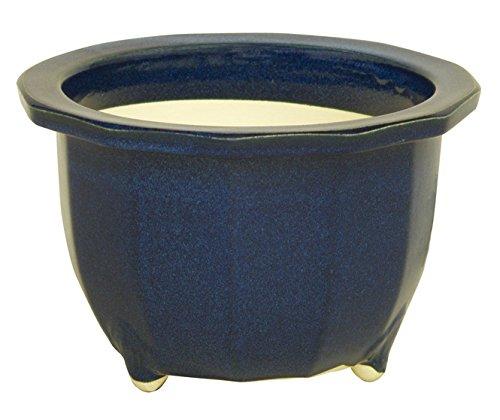 生子十二角輪型 8号 信楽焼 植木鉢 ガーデニング 陶器鉢