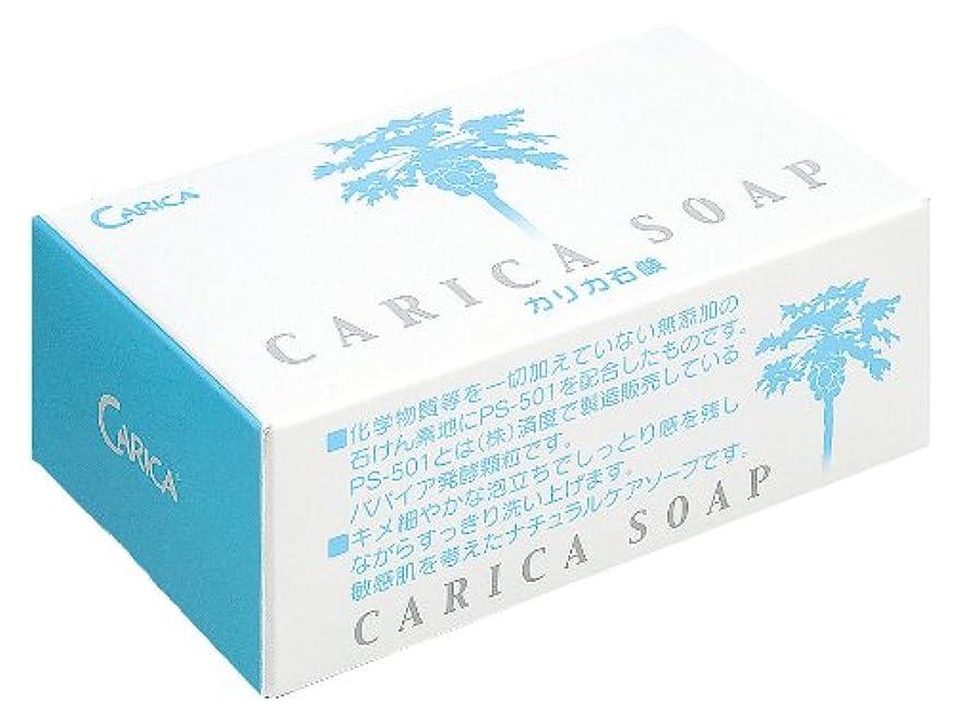 お茶本体敵対的カリカ石鹸100g