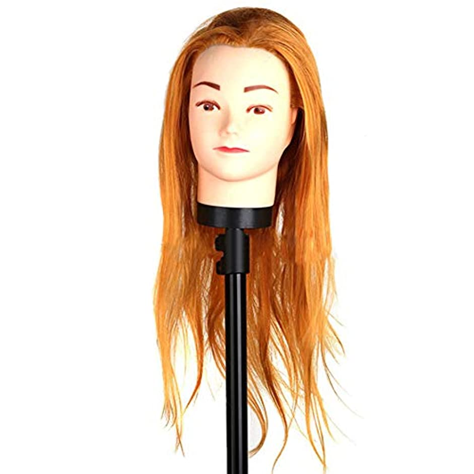 アコード撤回する翻訳する高温繊維かつらヘッドモールドメイクヘアスタイリングヘッドヘアーサロントレーニング学習ヘアカットデュアルユースダミー人間の頭
