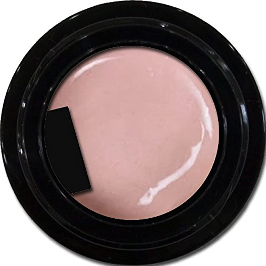 カート徹底シソーラスカラージェル enchant color gel P303 PeachPearl 3g/ パールカラージェル P303ピーチパール 3グラム