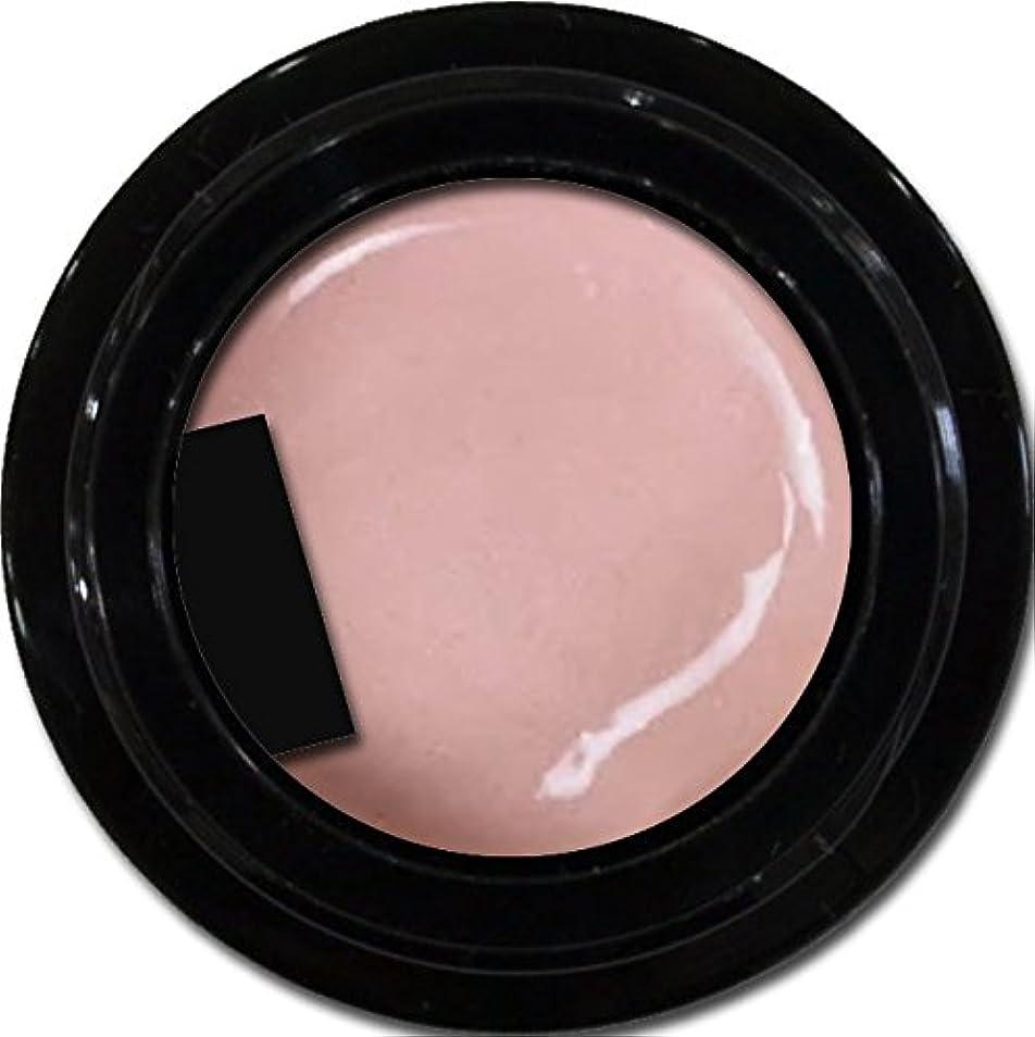 セッティング敬意るカラージェル enchant color gel P303 PeachPearl 3g/ パールカラージェル P303ピーチパール 3グラム