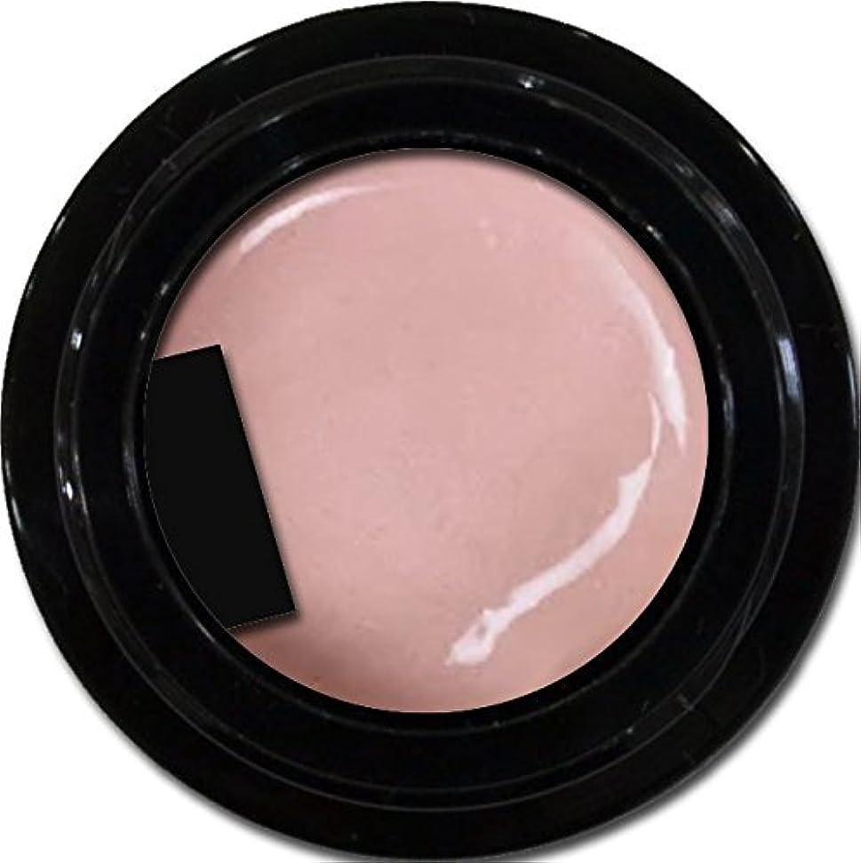 深める状態干し草カラージェル enchant color gel P303 PeachPearl 3g/ パールカラージェル P303ピーチパール 3グラム