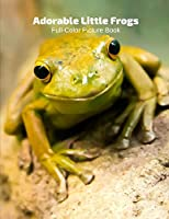 Adorable Frogs Full-Color Picture Book: Toads Picture Book for Children, Seniors and Alzheimer's Patients -Amphibians Wildlife Nature