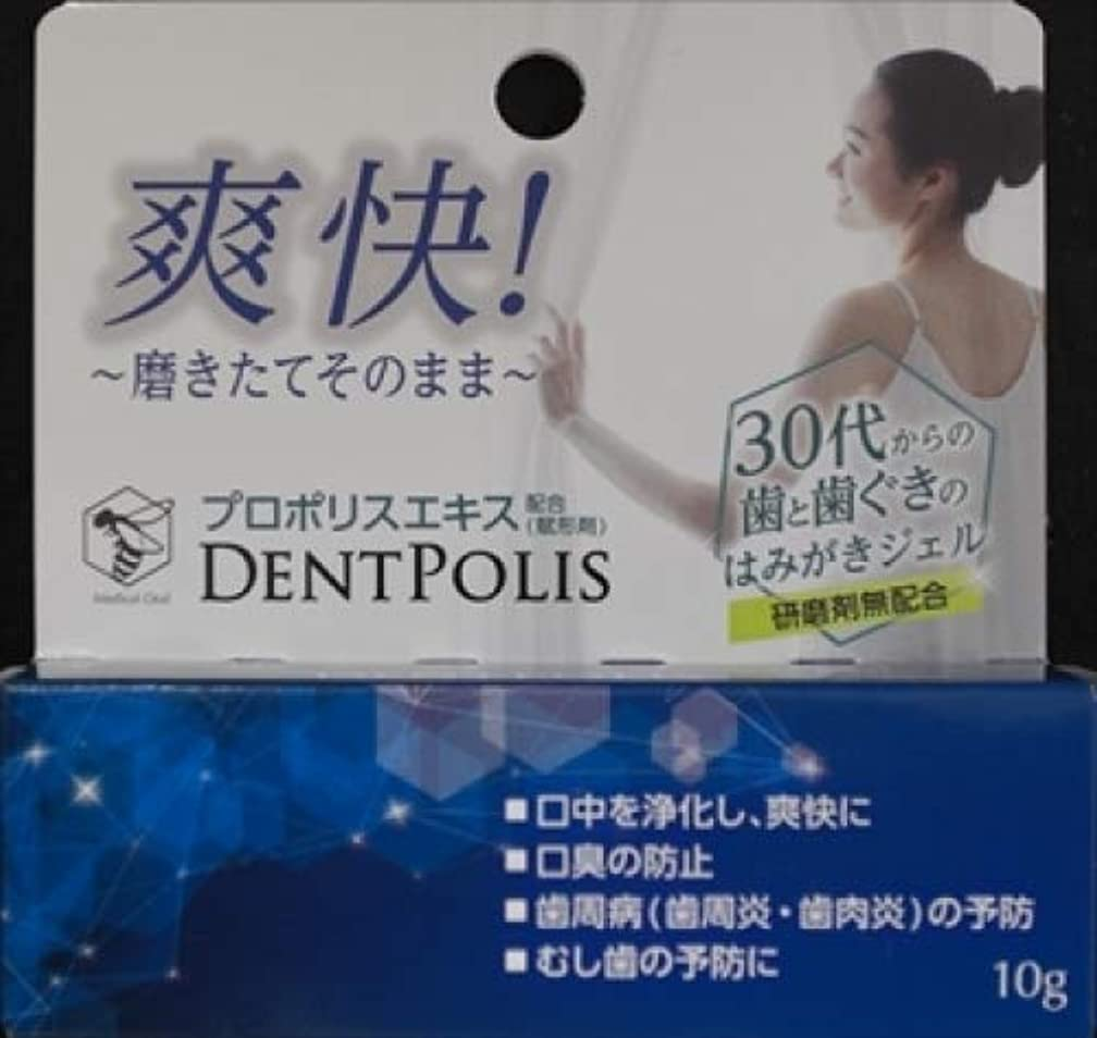 大木製薬 医薬部外品 デントポリス 10g