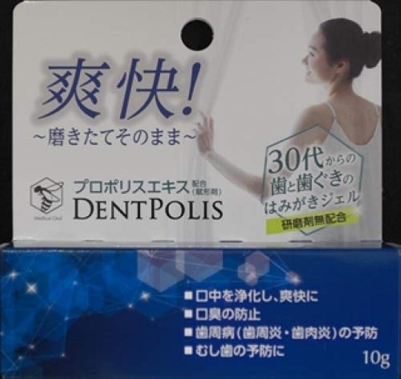 再生可能動脈苦難大木製薬 医薬部外品 デントポリス 10g