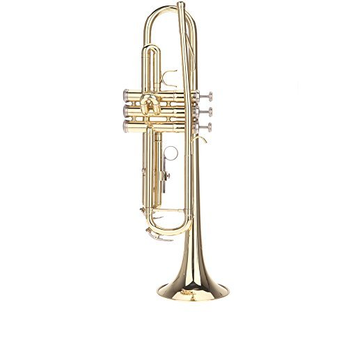 ammoon 初心者入門5点セット Bb B フラット トランペット 黄銅製 吹奏 金管楽器