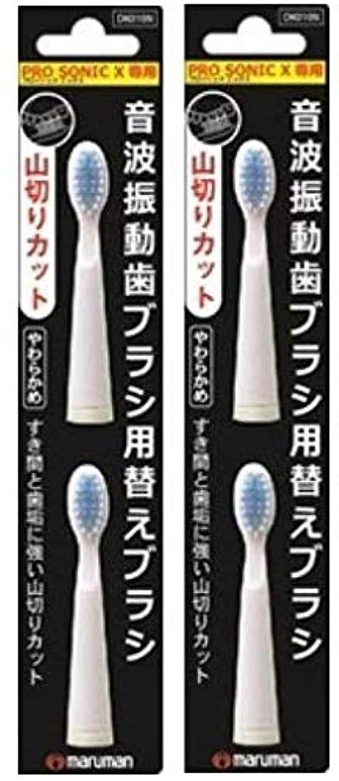 シダ絡まる登場プロソニックX専用替えブラシ 山切り DK010N 2個×2セット