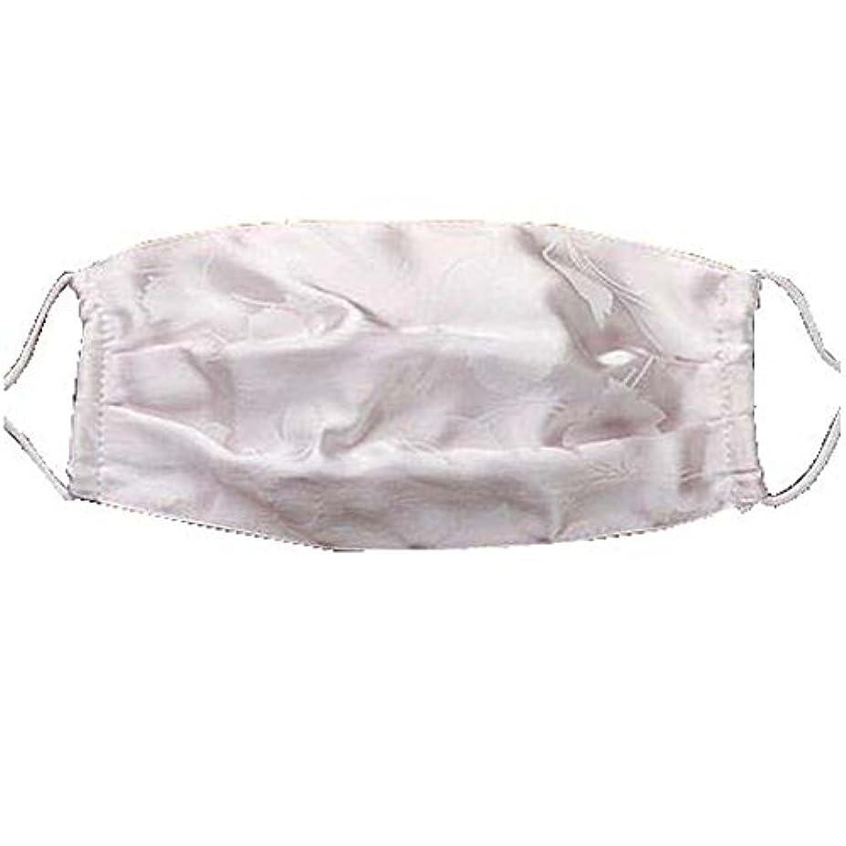 口腔マスクダストマスク抗汚染活性炭フィルターインサートシルクマスク