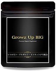 Growz Up BIG シトルリン アルギニン マカ 亜鉛 クラチャイダム 自信増大 男性用 サプリ 90粒