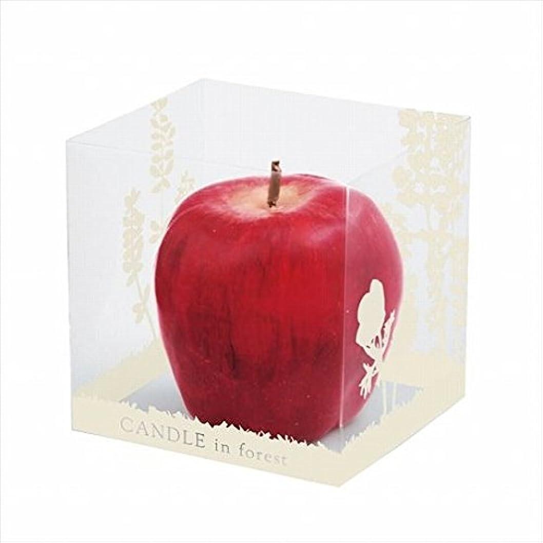 眠いですバクテリアしなやかカメヤマキャンドル(kameyama candle) アップルキャンドル