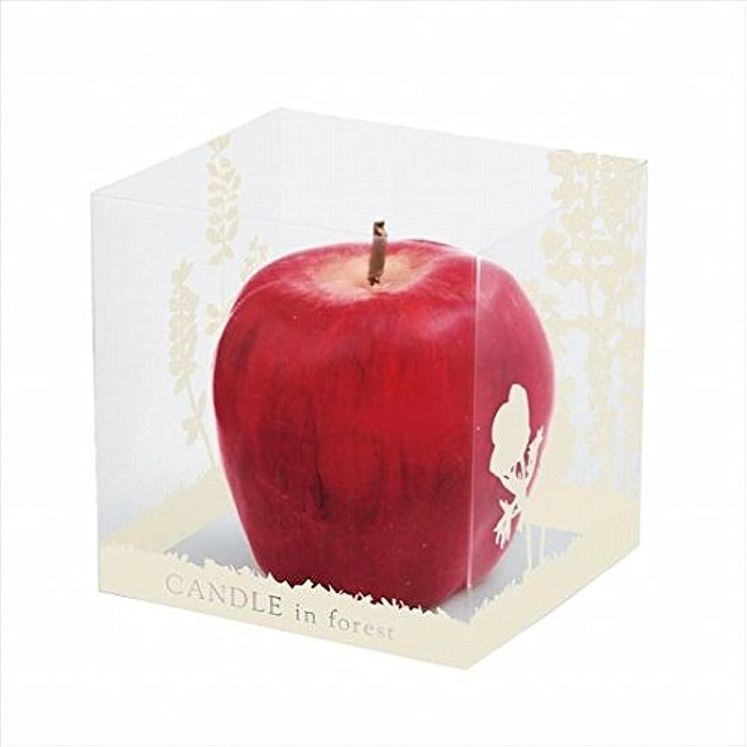 参照する配偶者不名誉なカメヤマキャンドル(kameyama candle) アップルキャンドル