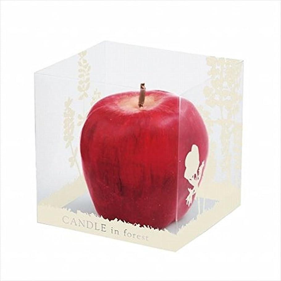 割る違法原始的なカメヤマキャンドル(kameyama candle) アップルキャンドル