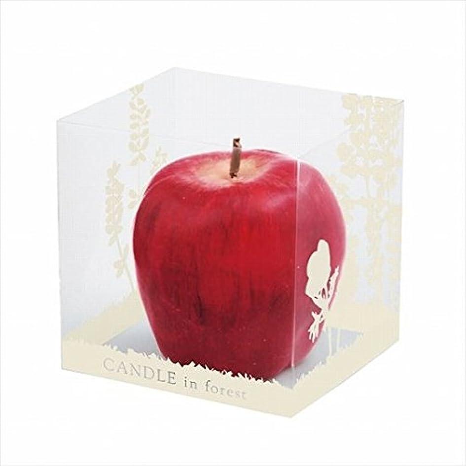 重要性魔法アシストカメヤマキャンドル(kameyama candle) アップルキャンドル