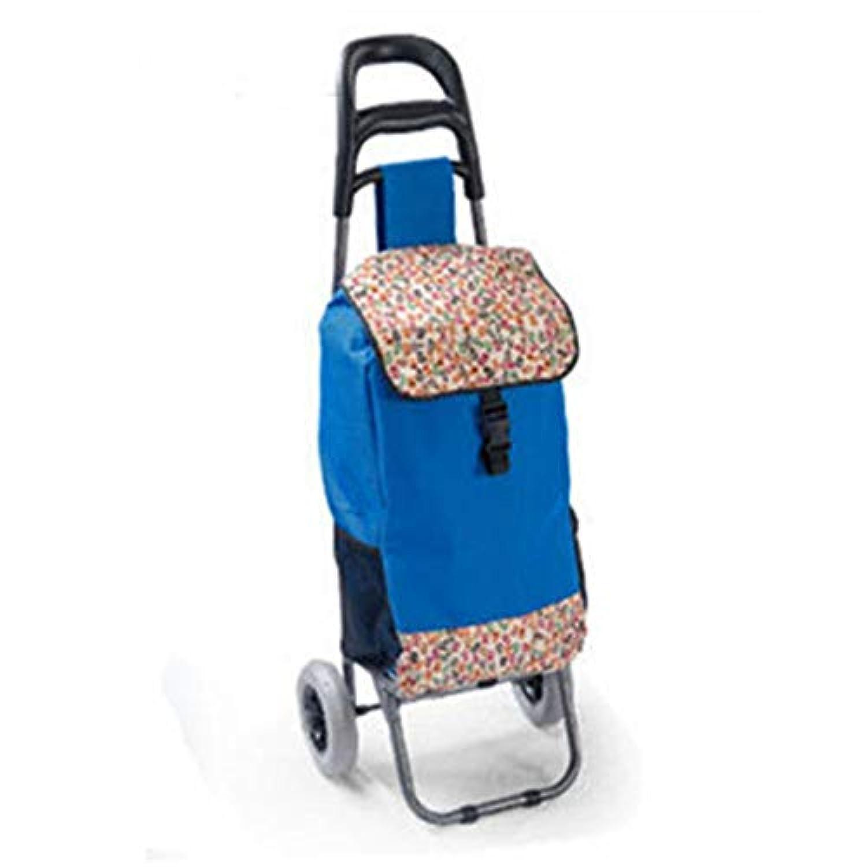 ショッピングカート、老人ショッピングカート2ラウンド簡単ショッピングトロリー折りたたみ式ブルー35x28x93cm