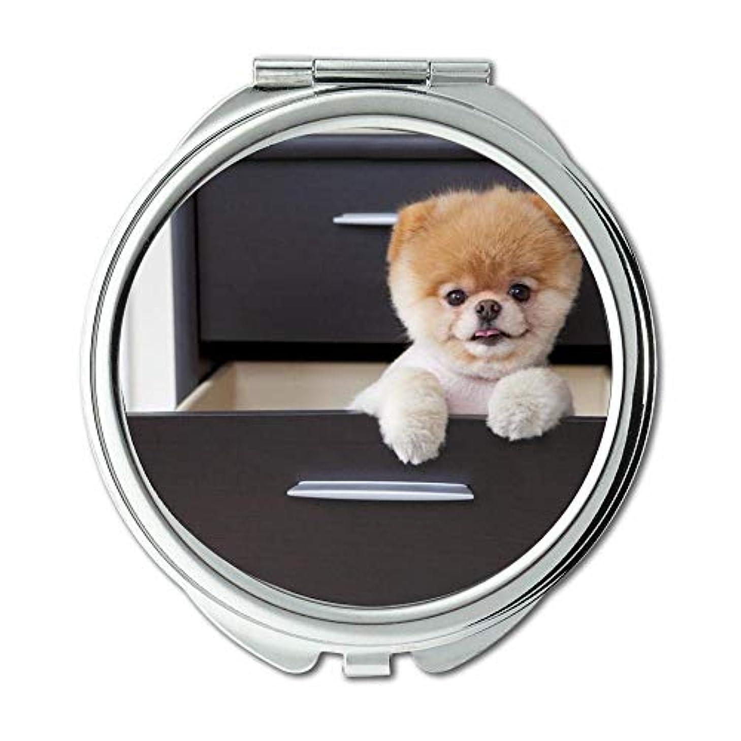減衰放棄ピクニックをするミラー、スモールミラー、子犬犬のブードッグ、ポケットミラー、1 X 2X 倍の拡大鏡