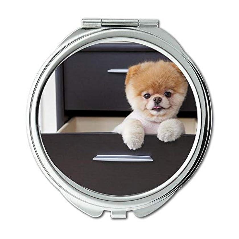 未払い回答インドミラー、スモールミラー、子犬犬のブードッグ、ポケットミラー、1 X 2X 倍の拡大鏡