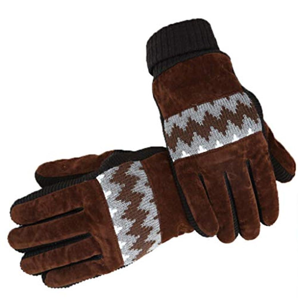 データ指紋排除手袋の男性の冬プラスベルベット寒い暖かいサイクリング秋と冬の防風タッチスクリーンの綿手袋の水リップル黒 (色 : Brown)