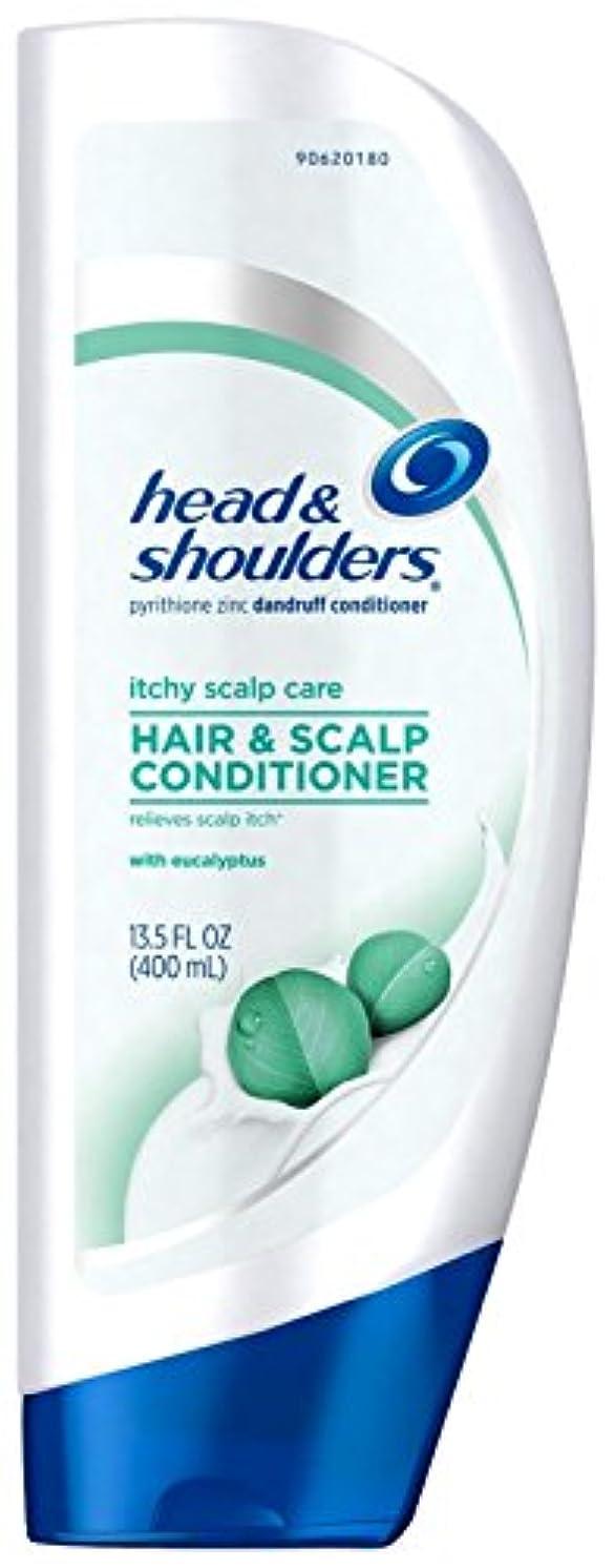 とてもシュート結果としてHead & Shoulders ユーカリとかゆみ頭皮ケアコンディショナー - 13.5オズ