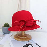 HENGTONGTONGXUN Ms. Autumn and Winter Hats Flower Pots Hat Korean Fashion Elegant Wild Mesh Hat Felt Hat Simple and Practical Product (Color : Red, Size : One Size)
