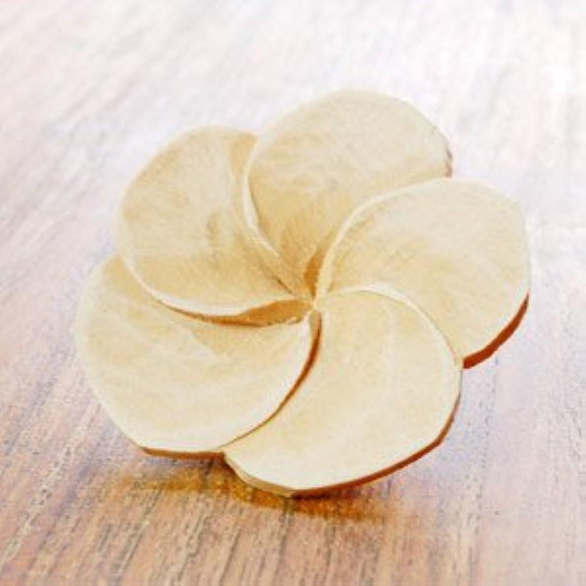 ペア洞察力のあるいらいらする【アジア工房】プルメリアの花びらをモチーフにした木製アロマフラワー[Aタイプ][10891] [並行輸入品]