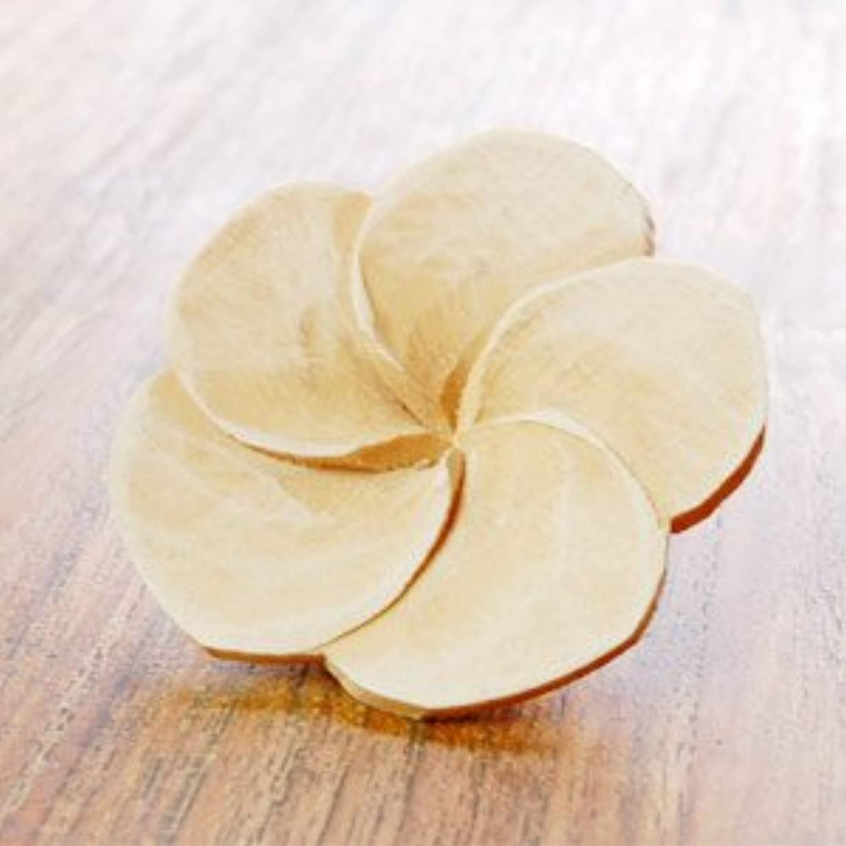 遊具海岸方程式【アジア工房】プルメリアの花びらをモチーフにした木製アロマフラワー[Aタイプ][10891] [並行輸入品]