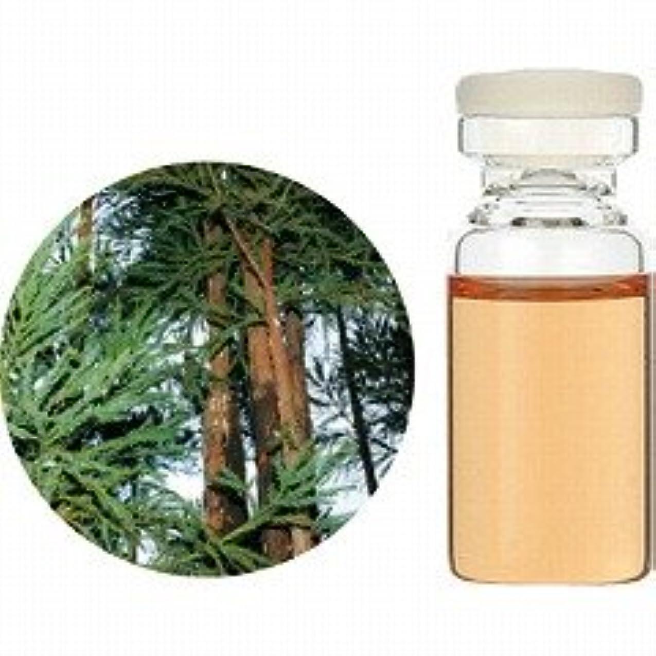 試してみる刺します処理する【生活の木】エッセンシャルオイル(精油) 杉(木部) 3ml