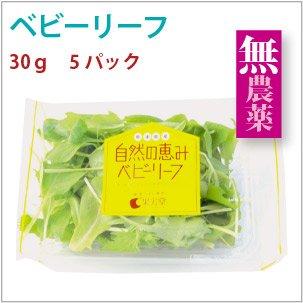 【ベビーリーフ 30g×5パック】熊本県産有機栽培。【送料込】
