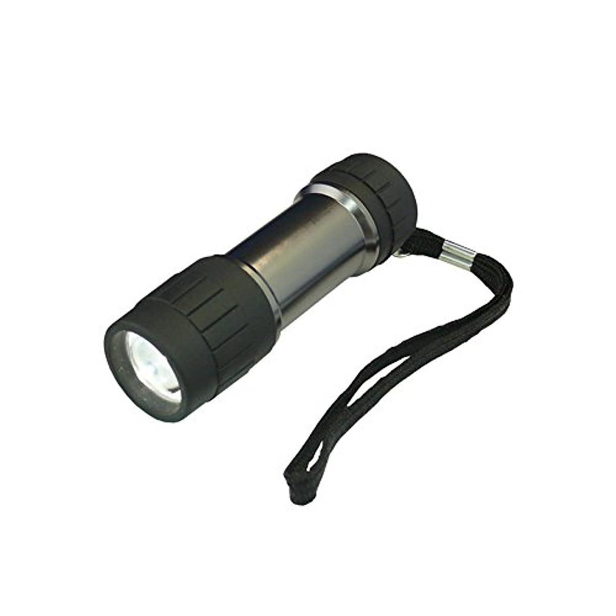アスリートアーサーコナンドイルティーンエイジャーコンテック(kontec) LEDパワーハンドライト 0.5W 白色?風神 SE-11
