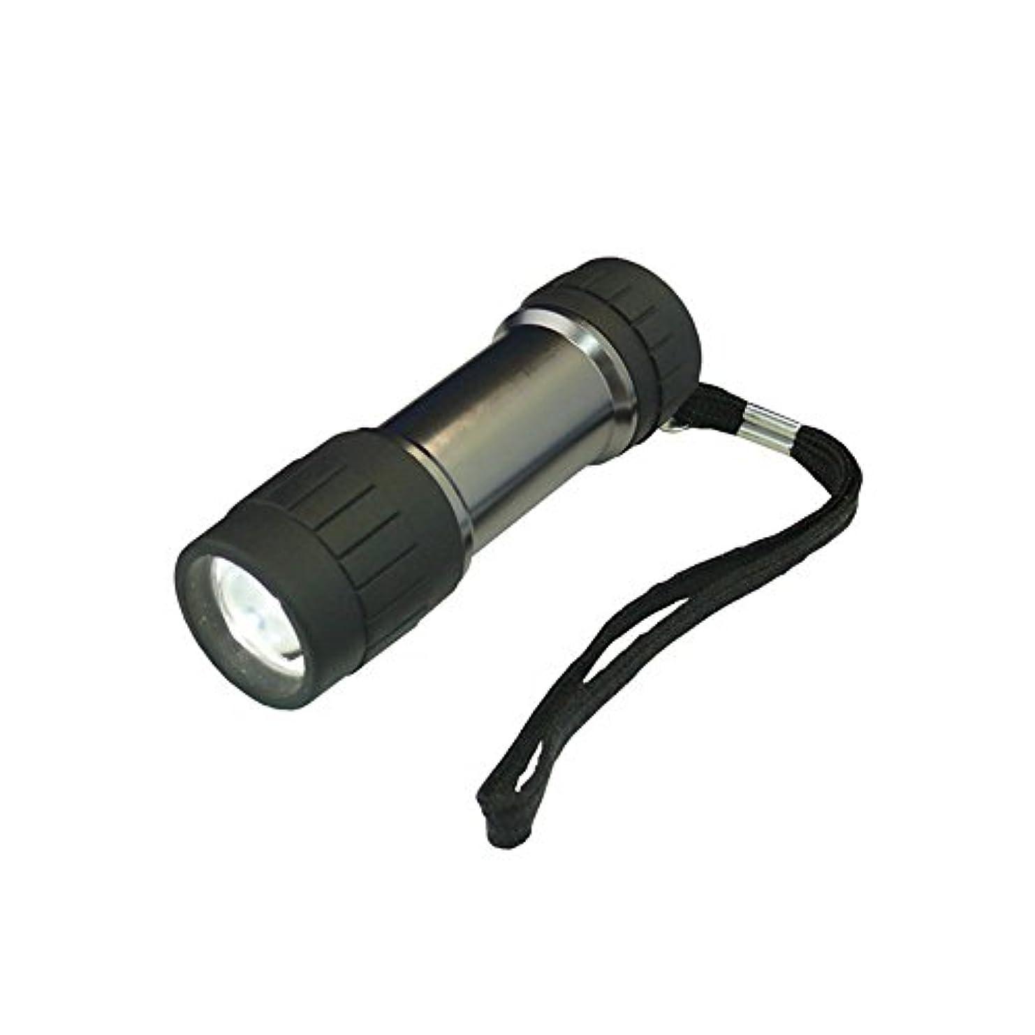 コンドーム不実夕暮れコンテック(kontec) LEDパワーハンドライト 0.5W 白色?風神 SE-11