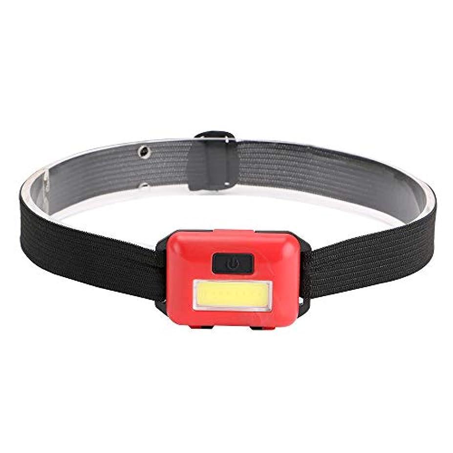 軽減ぶどう全滅させるCOB ヘッドライト 赤 LEDヘッドライト ヘッドランプ ミドルライト, ローライト, 点滅の3パターン点灯が可能