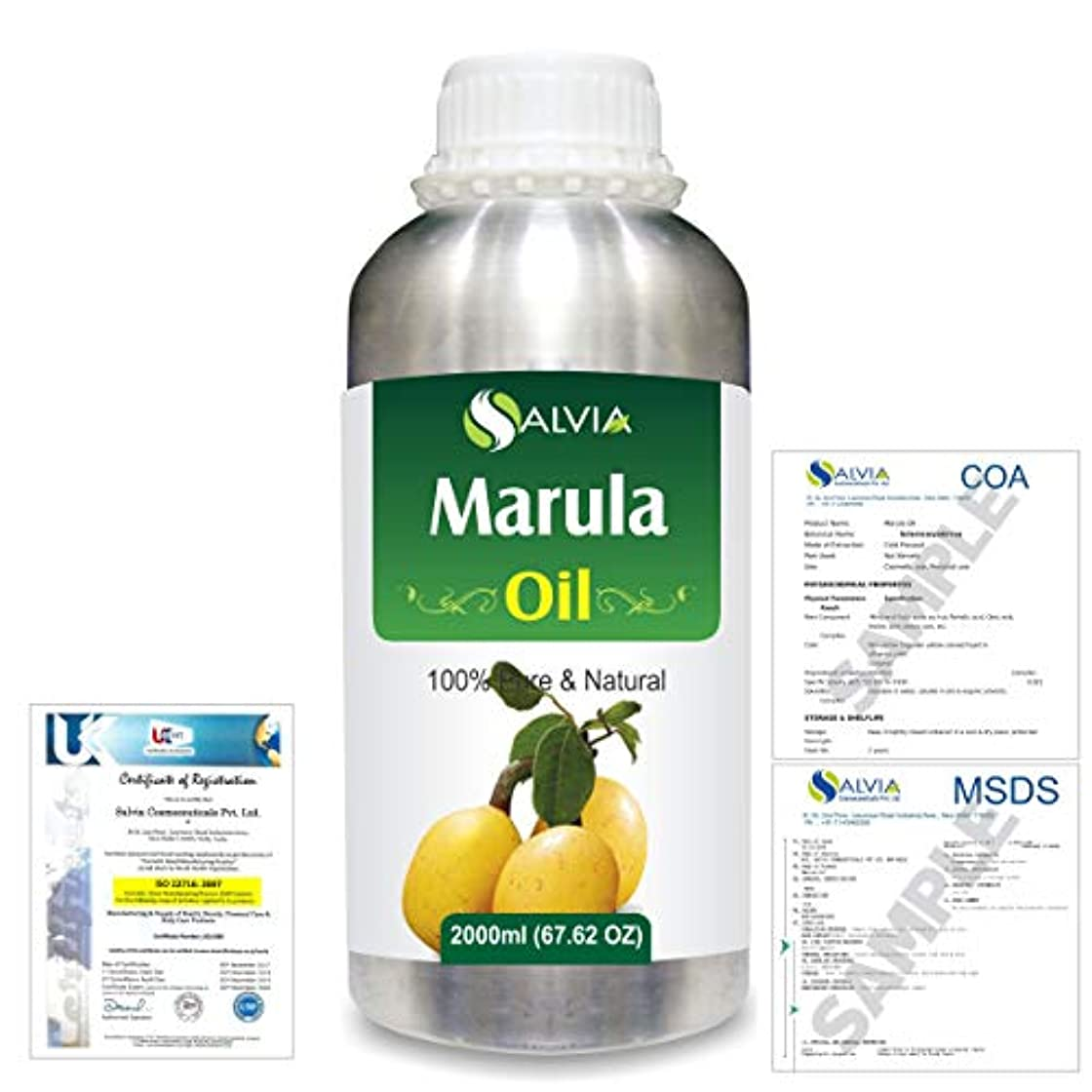 炭素摂氏告発者Marula (Sclerocarya birrea) Natural Pure Undiluted Uncut Carrier Oil 2000ml/67 fl.oz.
