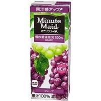 明治乳業 明治 Minute Maid(ミニッツメイド) グレープ100%200ml紙パック×24本入