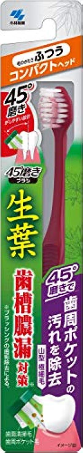 背の高いテクスチャーミケランジェロ小林製薬 生葉45°磨きブラシ コンパクト 歯周ポケットの汚れを除去 ふつう