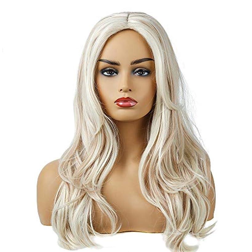 庭園読者容量女性のためのホワイト女性の毎日のパーティーウィッグ用ロング波状レースナチュラル人工毛かつら高温耐熱性繊維毛ウィッグ (Color : Beige)