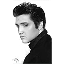 Personality of Elvis Presley (PSYCH 101) (English Edition)