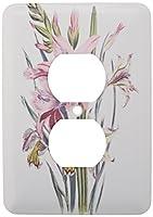 3drose LLC lsp _ 149637_ 6ヴィンテージ花Gladiolusクリームとピンク2プラグコンセントカバー